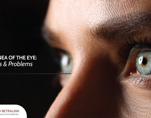 The Cornea of the Eye: Functions & Problems