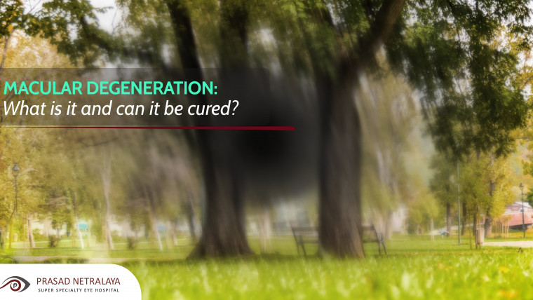 Macular Degeneration: What Is it and Can it Be Cured?